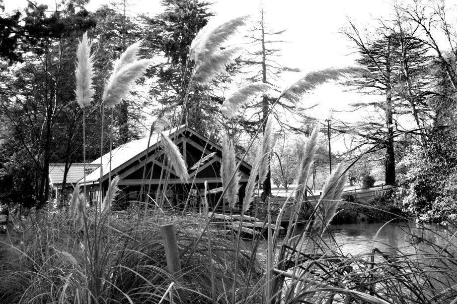 Boathouse in Farmleigh