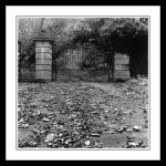 derelict gates in phoenix park
