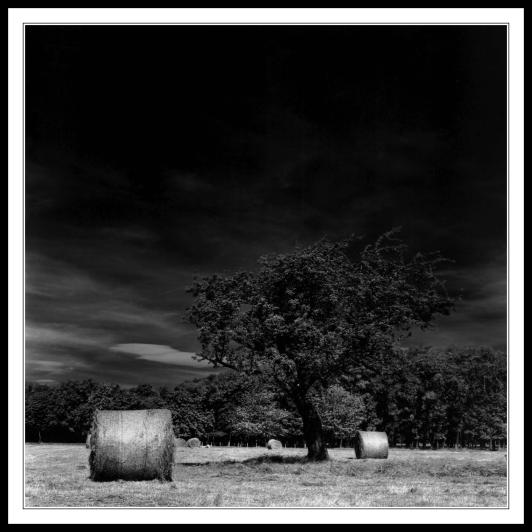 Haybales in Infra Red