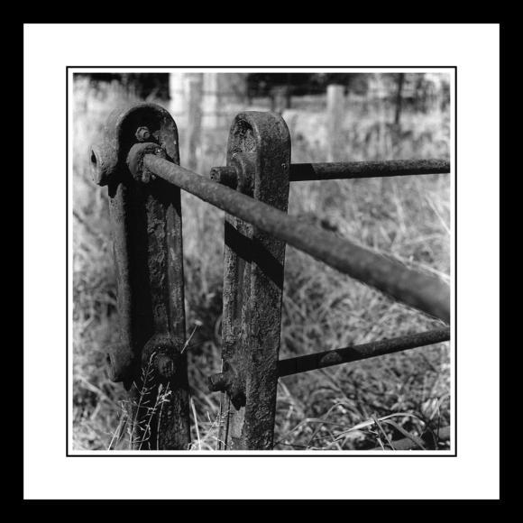 Rusty metal fence